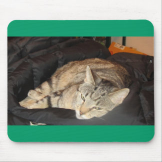 Snuggle Time For Indigo Mouse Pads