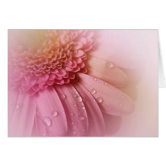 Soft Pink Gerbera With Water Bubbles Note Card