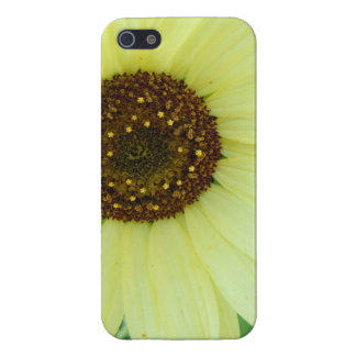 Soft Yellow Sunflower iPhone 5 Cover