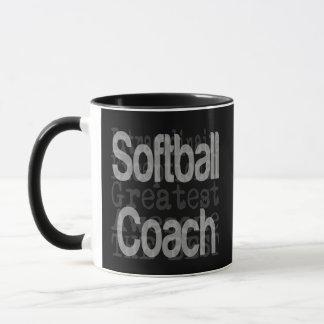 Softball Coach Extraordinaire Mug