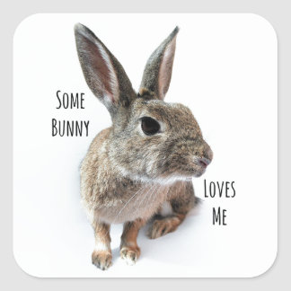Some Bunny Loves Me Collection Rabbit Easter Square Sticker
