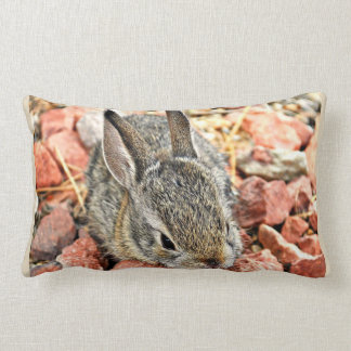 Sonoran Baby Bunny Throw Pillow