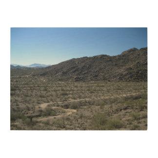 Sonoran Desert Wood Canvas