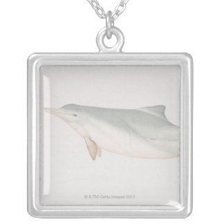 Sousa chinensis, Indo-Pacific Humpback Dolphin, Silver Plated Necklace