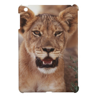 South Africa, Kalahari Gemsbok National Park 3 iPad Mini Covers