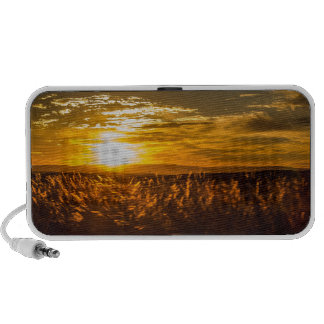 South African Sunset Notebook Speaker