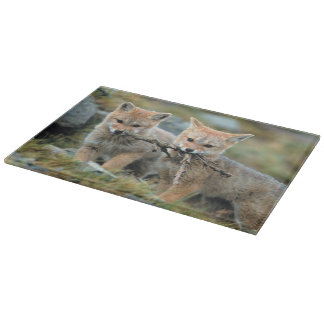 South America, Chile, Torres del Paine National Cutting Board