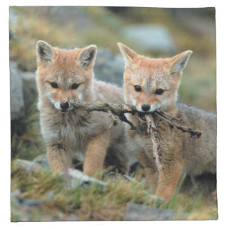 South America, Chile, Torres del Paine National Napkin