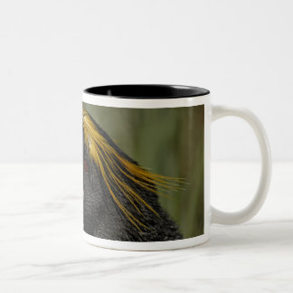 South Atlantic Ocean, South Georgia Island, 2 Two-Tone Coffee Mug