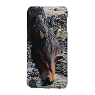 South Devon Beach Dartmoor Pony In Seaweed iPod Touch 5G Covers