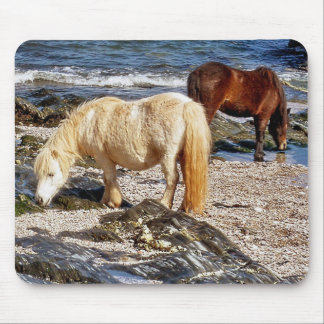 South Devon Beach Two Ponies Eating Seaweed Mouse Pad