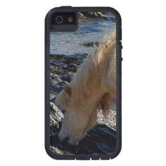 South Devon Shetland  Pony Eating Seaweed Case For The iPhone 5