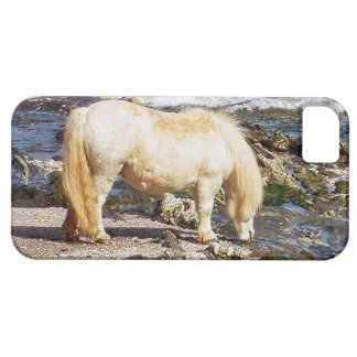 South Devon Shetland Pony Eating Seaweed On Beach iPhone 5 Cover