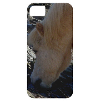 South Devon Shetland Pony Eating Seaweed On Beach iPhone 5 Covers