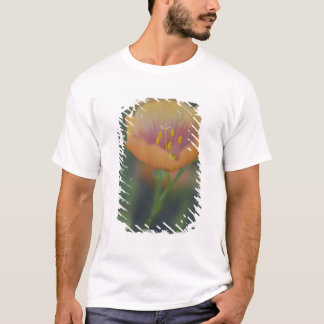 South of Devine Texas along Interstate 35 T-Shirt