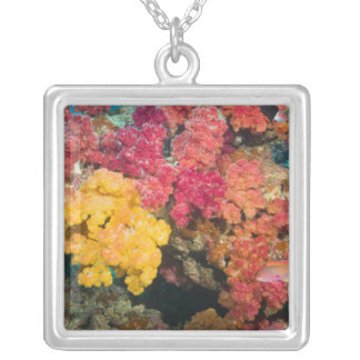 South Pacific, Fiji, Rainbow Reef in Taveuni Silver Plated Necklace