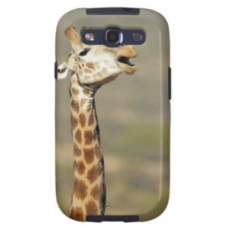Southern African giraffe (Giraffa camelopardalis Galaxy SIII Case