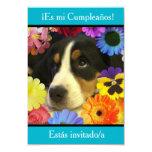 Spanish: Fiesta de cumpleaños - Invitación 9 Cm X 13 Cm Invitation Card