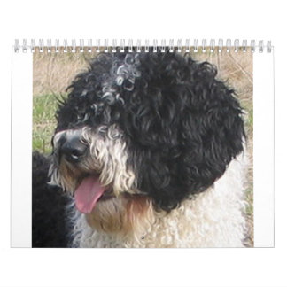 Spanish Water Dog.png Calendars