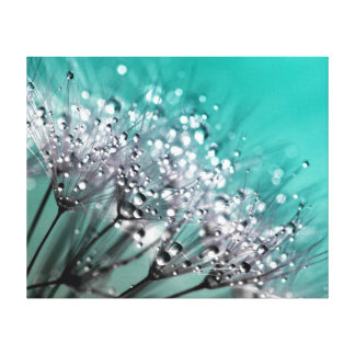 Sparkling Dew Dandelion Turquoise Background Canvas Print