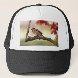 Sparrow Bird in Tree Trucker Hat