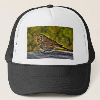 Sparrow of my dreams trucker hat