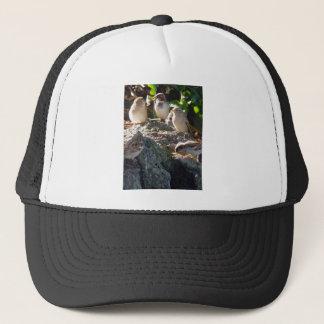 Sparrows Trucker Hat