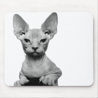 Sphynx Mouse Pads