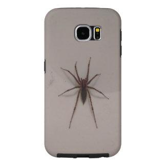 Spider case