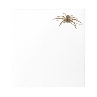 Spider Notepads