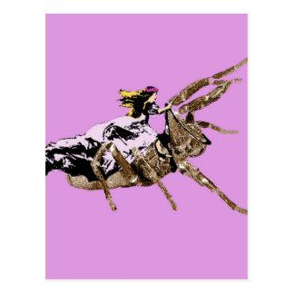 spider princess postcard