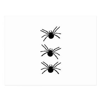 Spiders Border Postcard