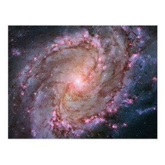 Spiral Galaxy M83 Postcard