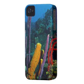 Sponge Garden iPhone 4 Cover