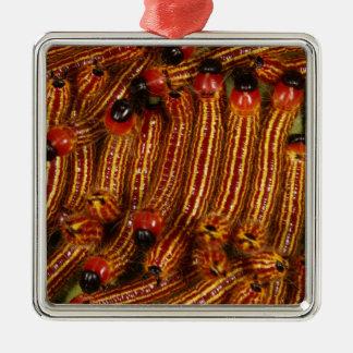 Spotted Datana Moth Caterpillars Christmas Ornament