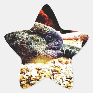 Spotted Eel Star Sticker