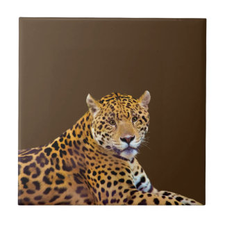 Spotted Jaguar Big Cat-lover #Gift Tile