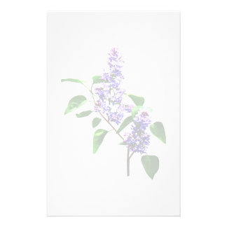 Spray of Lilacs Stationery