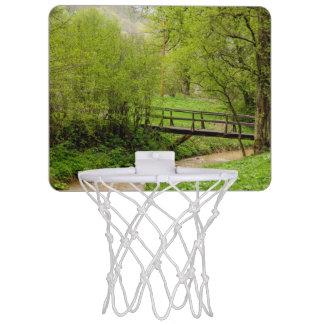 Spring Bridge, Lush Green Landscape Photograph Mini Basketball Hoop
