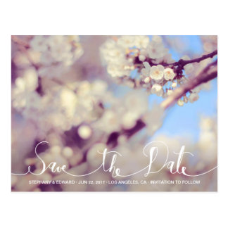 Spring Cherry Blossom Save the Date Photo Postcard