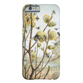 Spring Day Barely There iPhone 6 Case