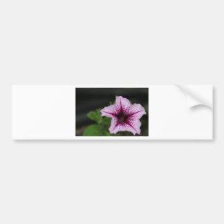 Spring Flower Bumper Sticker