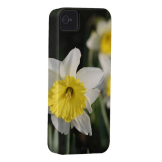 Spring Flowers Case-Mate iPhone 4 Cases