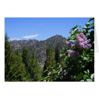 Spring Lilacs Card