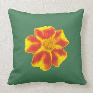 Spring Outdoor pillow