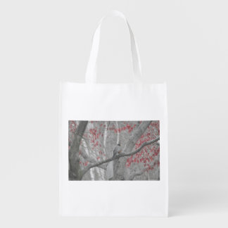 Spring Robin in the Old Red Maple Tree Reusable Grocery Bag