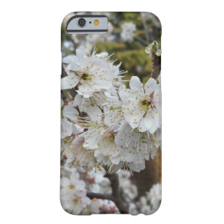 Spring Time Cherry Blossoms Barely There iPhone 6 Case