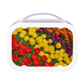 Spring tulips print lunchbox