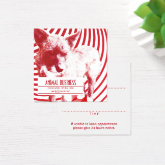 square crazy pup pet appointment reminder square business card
