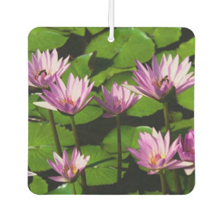 Square Water Lilies Air Freshener